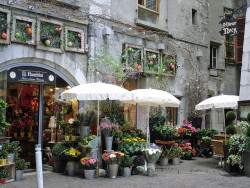| ♕ |  Florists in Annecy, France  | by © Michele*mp | via ysvoice