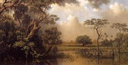 Martin Johnson Heade - The Great Florida Marsh