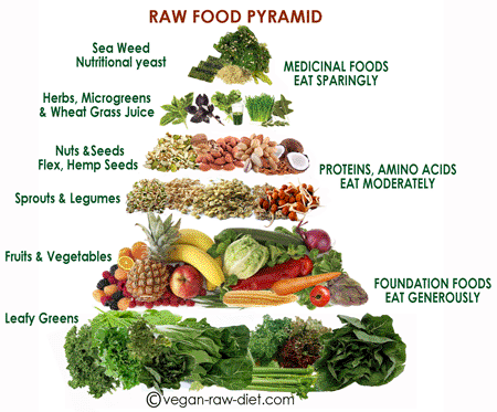 transveganzombie:  Finally, a food pyramid for raw vegans like me!!