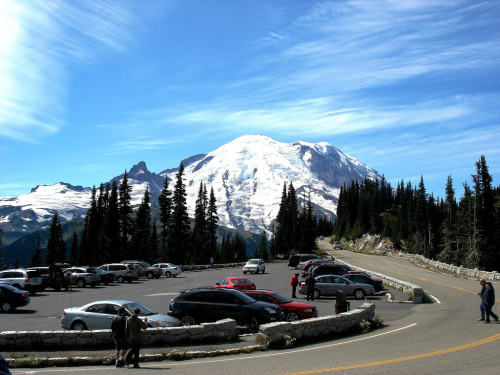 blackbearnaps:  Mt. Rainier, Washington.