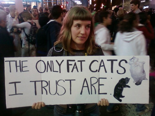 The only fat cats I trust. Via Ariele Hertzoff.