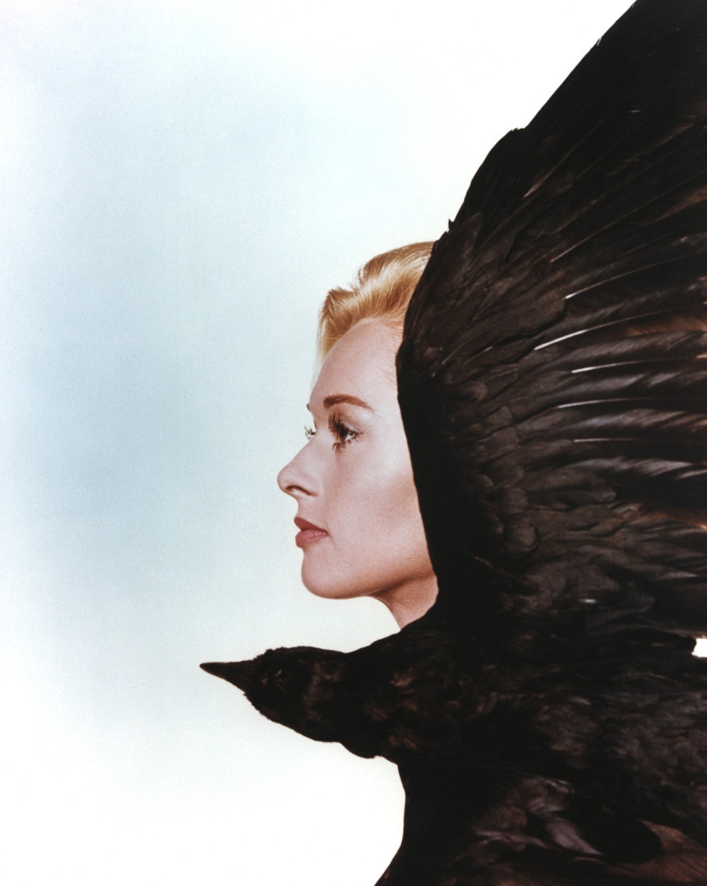 zeroing:Tippi Hedren - Promo photo for The Birds