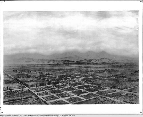 Aerial view of Anaheim in 1870, drawn by E. S. Glover.