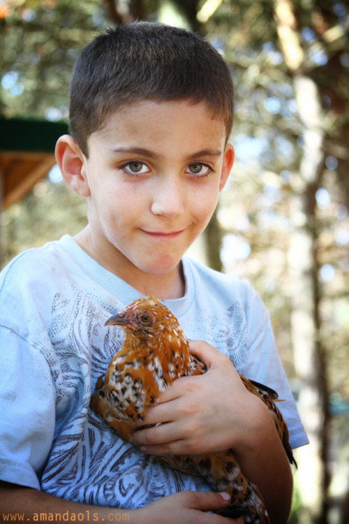 "Ethan & ""teenage"" chicken"
