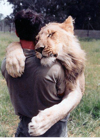 The power of cuddles! Awwwww.