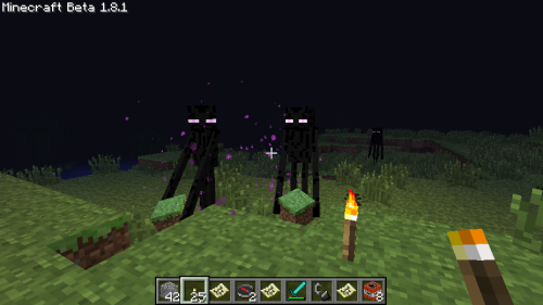 minbners:  Making friends with the Endermen.