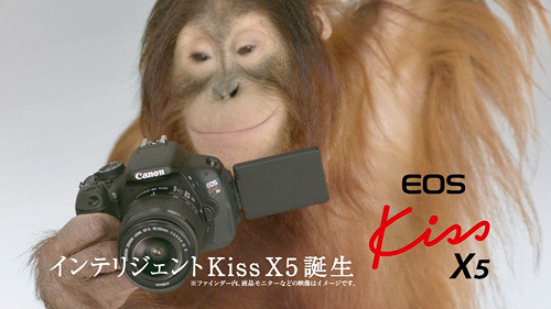 Canon - EOS Kiss X5 DSLR digital camera ''Orangutan''