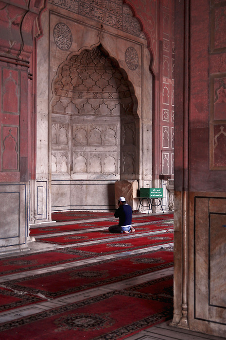 indiaincredible:  Dhuhr (afternoon prayer) at the Jama Masjid, Delhi,India (submission by tbone-stakez) Dude Thank's so much..  I've only ever been inside a couple mosques, but they are absolutely gorgeous.  Absolutely. Gorgeous.
