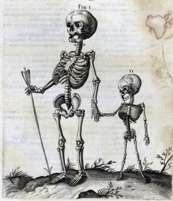 From Historia Anatomica Humani Corporis by Andrea Laurentio (1600).Collection: Stedelijk Museum Alkmaar. Found here.