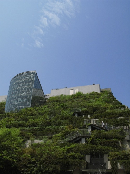 Japanese Architecture Takes Green Roofs to a Whole New Level – Literally | This Big City ACROS building, Fukuoka Japan More views via thisbigcity: 全文請見《城事》