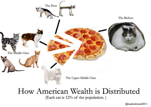 How American wealth is distributed (or not) to all you cool cats. From Fuck Yeah Charts via sweetskulls.