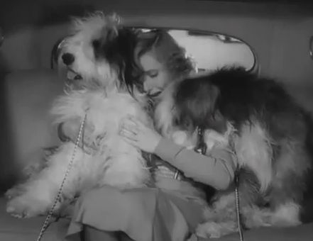theghostandmrsmuir:  Jean Arthur in Easy Living Look at how cute they are!!!