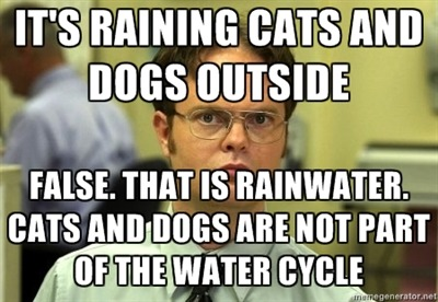 It's raining cats and dogs outside