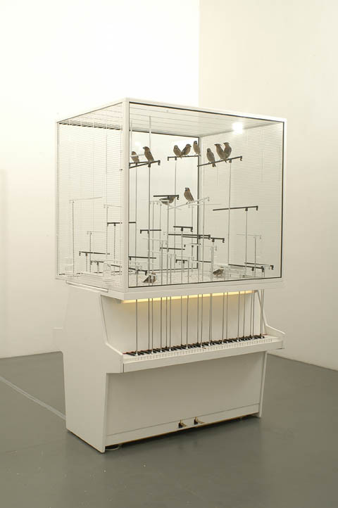 mounts:  Bird cage with real birds and 2 real vertical pianos – when birds jump on the aluminium straw they play piano notes, robert gligorovs.