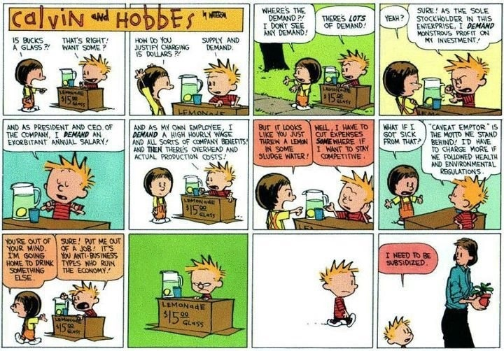 curiositycounts:  Decades-old Calvin and Hobbes comic strip succinctly explains the Occupy Wall Street movement   (via)  DECADES OLD.