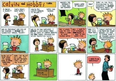 Decades-old Calvin and Hobbes comic strip succinctly explains the Occupy Wall Street movement.