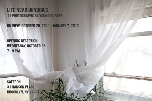 Friends! I'm excited to invite you the opening reception of Life Near Windows next Wednesday, October 26th from 7:00 - 9:00 p.m. at Saffron (31 Hanson Place) in Fort Greene, Brooklyn. Join me for wine + baked goods!  Opening reception (with wine + treats): Wednesday, October 26th, 7 - 9 p.m.  Saffron 31 Hanson Place Brooklyn, NY 11217