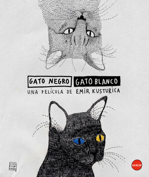 Cover para la película del director Emir Kusturica, Gato Negro Gato Blanco junto Avalon. ———————————————————————————————————- Cover for Emir Kusturica´s film ; Black Cat White Cat with Avalon Productions. http://www.avalonproductions.es/