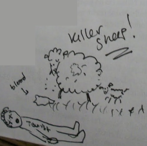 LOST JILLDOODLES WEEK Killer sheep and a tourist.