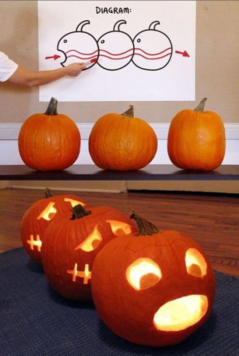 ianbrooks:     Jack-O-Lantern Centipede    Dont act like you dont like it, front. You've got it easy.    (via: obviouswinner)