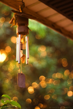 fuckyeahphotographics:  Wind Chimes Photographed by: http://capturedphotos.tumblr.com/