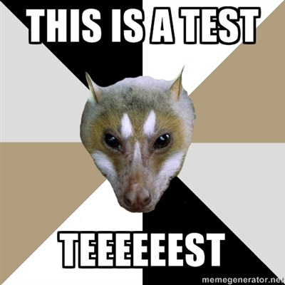 (via this is a test teeeeeest - FYeahAspiringAuthorBat | Meme Generator)