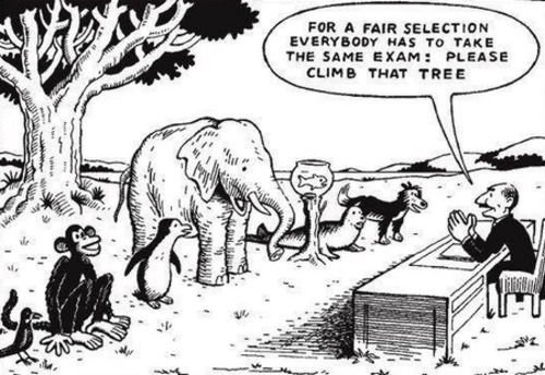 "shallowjokesandbrokenthoughts:  The educational system in one image. ""Everybody is a genius. But if you judge a fish on its ability to climb a tree, it will spend the rest of its life thinking it's an idiot."" -Albert Einstein"