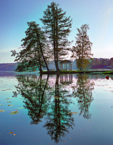 Clarity and harmony, Dalsland, Sweden (by Filip Nystedt)
