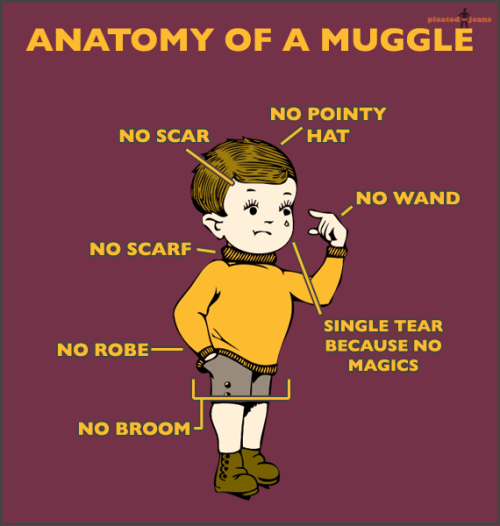 pleatedjeans:  anatomy of a muggle