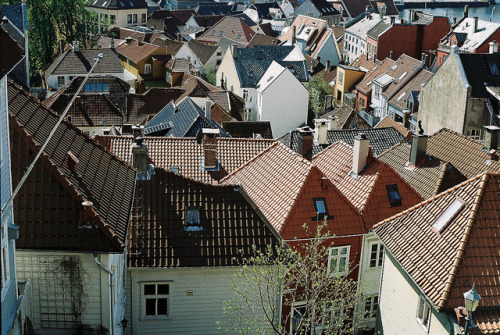 ysvoice:  | ♕ |  Roofs - Bergen, Norway  | by Sarah McLean