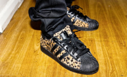 "Big Sean X Adidas ""80's Leopard"" Superstar"