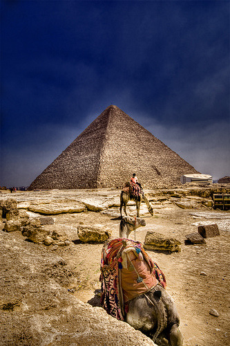 Pyramids and camels in Giza, Egypt (by Khaled A.K)