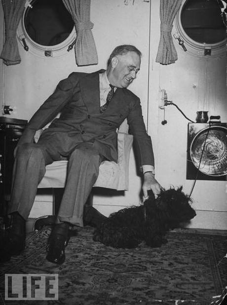 FDR plays with his faithful Scottish terrier, Dec. 1, 1940. (LIFE)