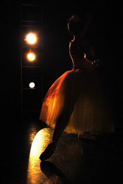 in the wings by sillisilvia on Flickr.