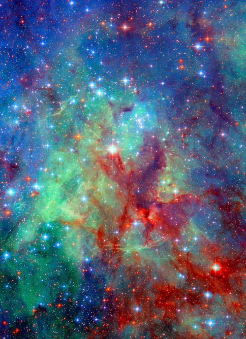 weareallstarstuff:  Tarantula Nebula  one of my favorite nebula!