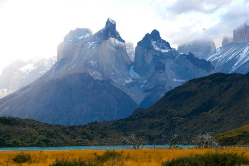 "arrezio:  PATAGONIA, CHILE: the greatness of Torres del Paine National Park by thejourney1972 (South America ""addicted"") on Flickr.  Let's go; right now."