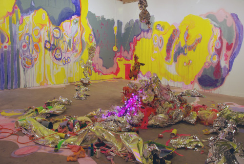 Installation view: Palatial Hemorrhages phase 3; CoLab, Austin, March 2011.