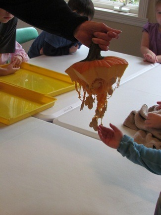 teachpreschool:  Exploring pumpkin seeds in the preschool classroom