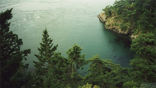 deception pass (by lawatt)