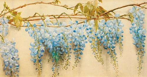 stilllifequickheart:  Emile Vernon Wisteria Bough Late 19th - early 20th century