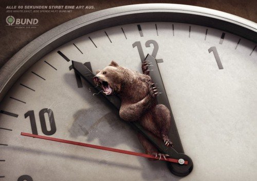 Silly bear, you can't be in that clock.You're a bear.