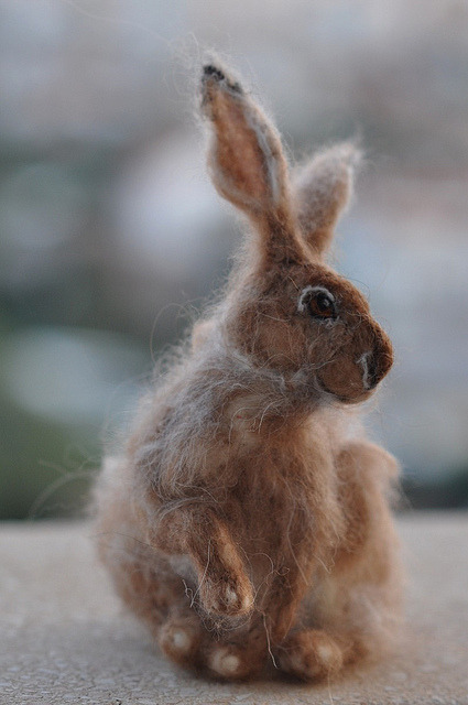 Amazingminiminipao:  Needle felted Jackrabbit.. by daria.lvovsky on Flickr.