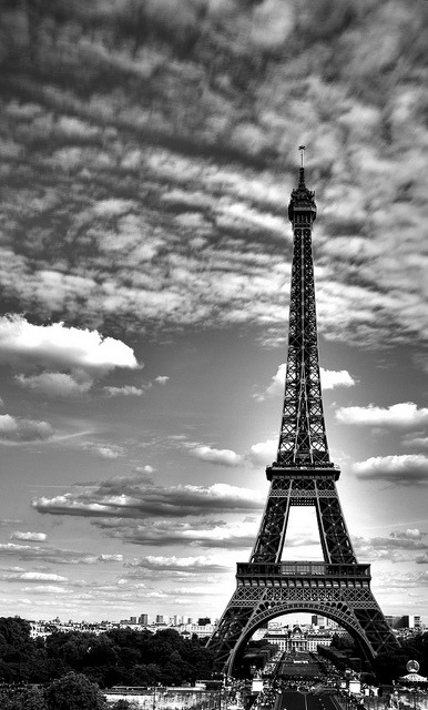 Eiffel Tower, by V a n e  on Flickr.