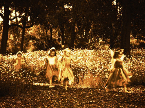 (via lady cottington's fairies | Flickr - Photo Sharing!)
