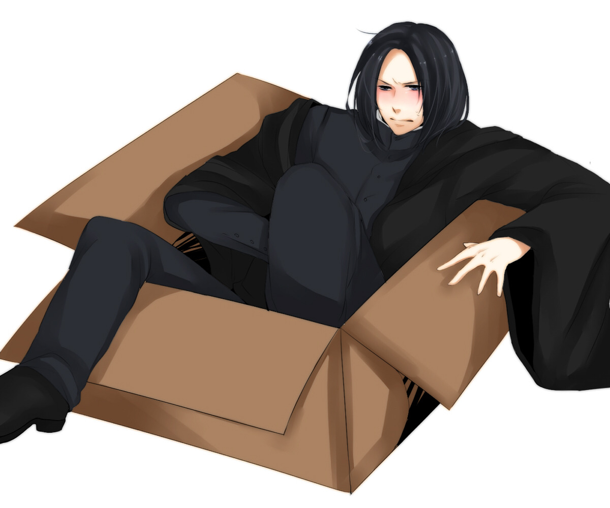 Snape in the box.