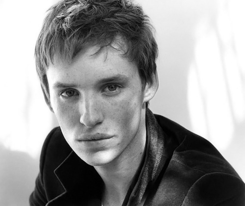 Eddie Redmayne by Susan Shacter