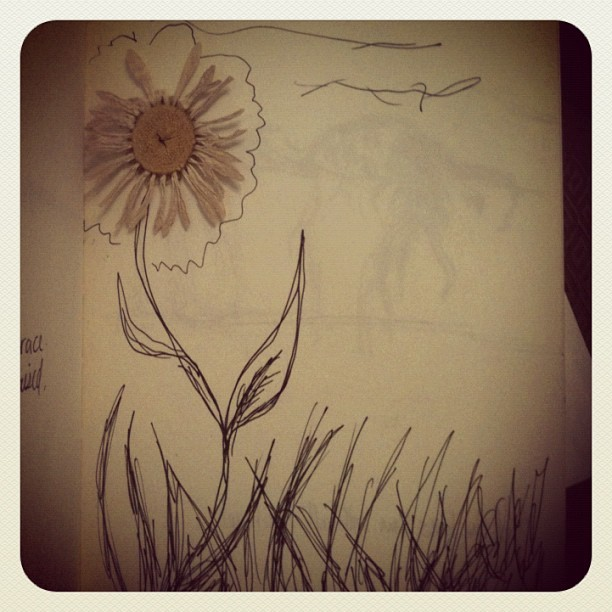 #sketch #daisy #sketchbook #moleskine (Taken with instagram)