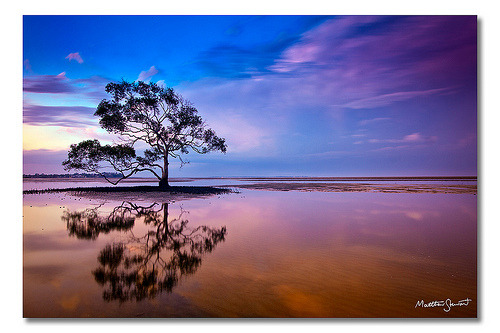 Nudgee Beach, Brisbane, Queensland, Australia (by Matthew Stewart | Photographer)