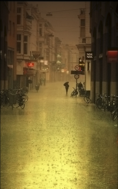 A rainy evening in the Netherlands (via rain | Flickr - Photo Sharing!)