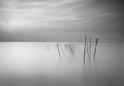 Calm sea and soft sky by photorapher Fatma Thuwaini from Kuwait. Her Flickr stream also features a 'white on white' series worth checking out.  Live Strong (explored) (by ' Fatma ✿ «KWS»)